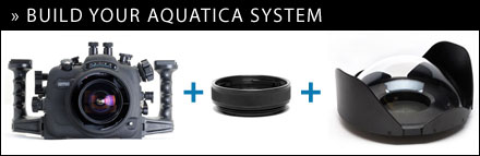 Build your Aquatica System